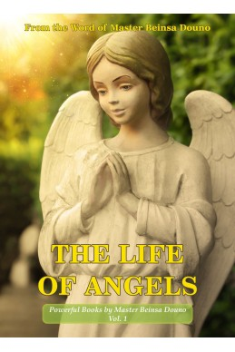 The life of angels