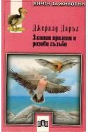 Златни прилепи и розови гълъби
