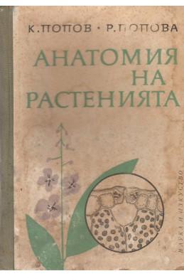 Анатомия на растенията