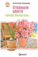Стайните цветя срещу болестите